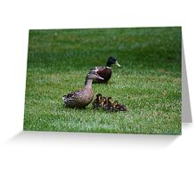 Mother & Father Duck w/ babies Greeting Card