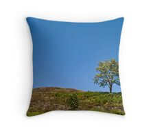 Rule of Thirds? Throw Pillow