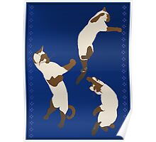 Three Playful Siamese Poster