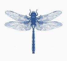Blue Dragonfly by Zehda