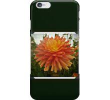 #DAHLIA iPhone Case/Skin