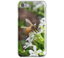 Bee Gathering Pollen no.2 iPhone Case/Skin