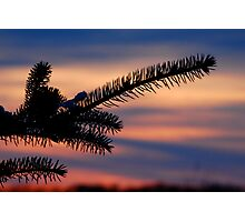small town beauty Photographic Print