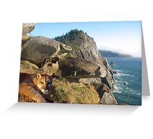 1070-California Coast Cougar Greeting Card