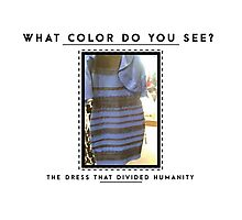 THE DRESS - WHAT COLOR DO YOU SEE? Photographic Print