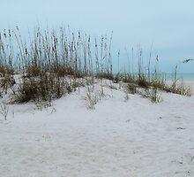 Winter Beach by Kathleen Brant