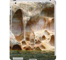 Water Pockets iPad Case/Skin