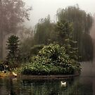 Island in the Fog by Barbara  Brown