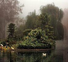 Island in the Fog by Barbara  Brown