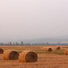 Haybales Haze by BrianAShaw