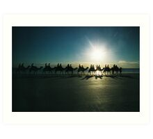 camels on cable beach 2 Art Print