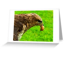 Chicken Again Greeting Card