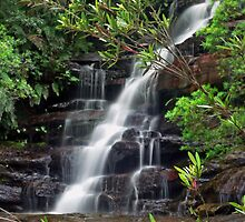 Somersby Falls (Yellow Flower Flow) by STEPHEN GEORGIOU PHOTOGRAPHY