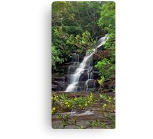 Somersby Falls (Yellow Flower Flow) Canvas Print