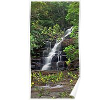 Somersby Falls (Yellow Flower Flow) Poster