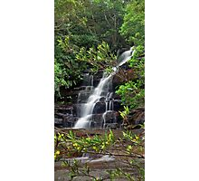 Somersby Falls (Yellow Flower Flow) Photographic Print