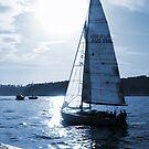 Blue Sails by Annette Blattman