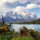 Lago Pehoe and the Paine Massif by Roantrum