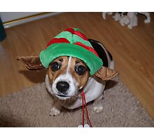 Santas Helper Photographic Print