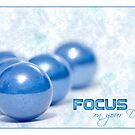 Focus on Your Dream by Freelancer