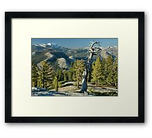 Sentinel Dome Evening Framed Print