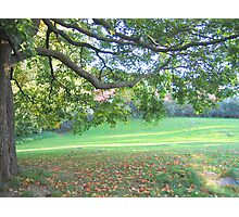 Sweet September Remembered Photographic Print