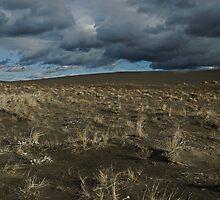 Desert Wind  & Rain by J. D. Adsit