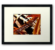 Diadems In Decay Framed Print