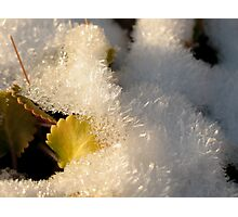 Crystals Photographic Print