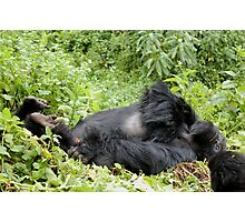 Mountain Gorilla Fun Photographic Print