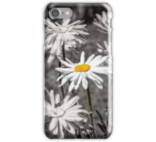 Daisies - selective colour iPhone Case/Skin