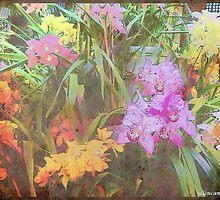 Pastel Spring by ecannon11