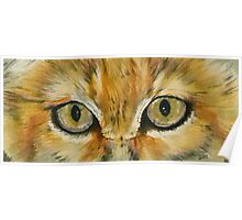 Eye-Catching Sand Cat Poster