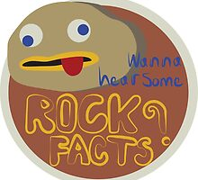 Rock Facts by MeaganDeGrand