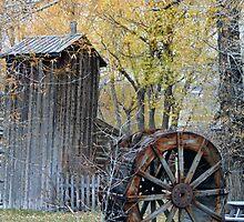 """Water Wheel"" by Lynn Bawden"