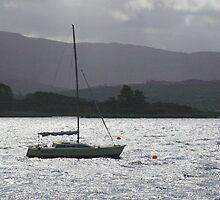 grey ships pass by Harry Hutchin