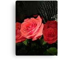 Roses 2 Canvas Print