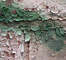 Peeling Paint 10 by rdshaw