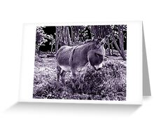 little donkey ... little donkey ... there's a star ahead! Greeting Card