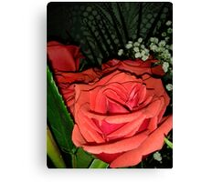 Roses 8 Canvas Print