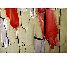 Peeling Paint 12 Photographic Print