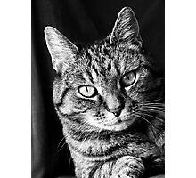 Portrait on chair Photographic Print