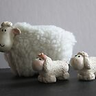 Three Sheep by Judi FitzPatrick