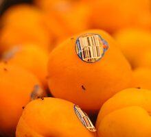 Fruit Flies by Emily Savill