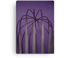 whisk  Canvas Print