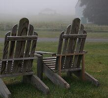 Foggy Farm by Judi FitzPatrick