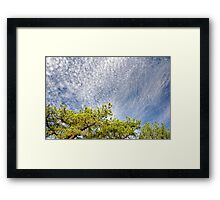 Pop Corn Sky Framed Print
