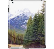 Canadian Rockies....Amazing View. iPad Case/Skin