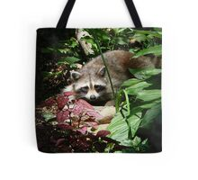 CATCHING A FEW RAYS Tote Bag
