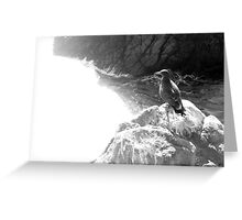Crystal White Greeting Card
